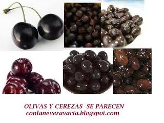 LA TRANSFORMACIÓN DE OLIVAS A CEREZAS.